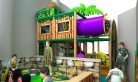 Cheer Amusement Jungle Themed Children Play Centre Indoor Soft Playground Equipment